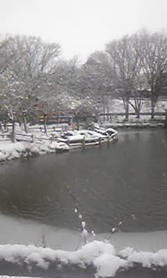 雪の菊名池