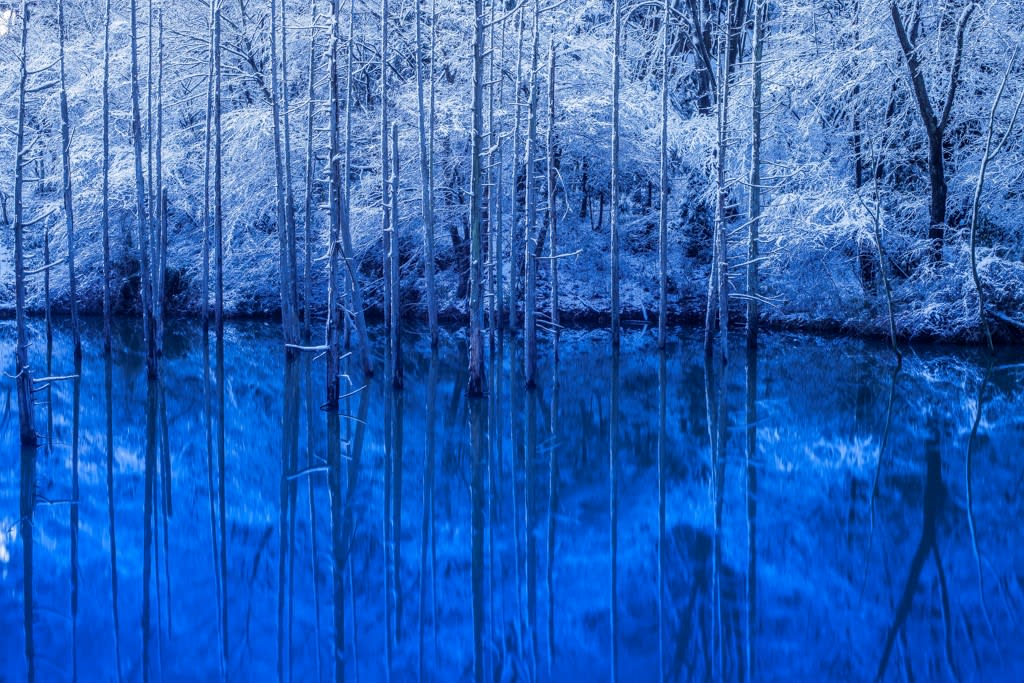 大田切池(雪景色)の写真