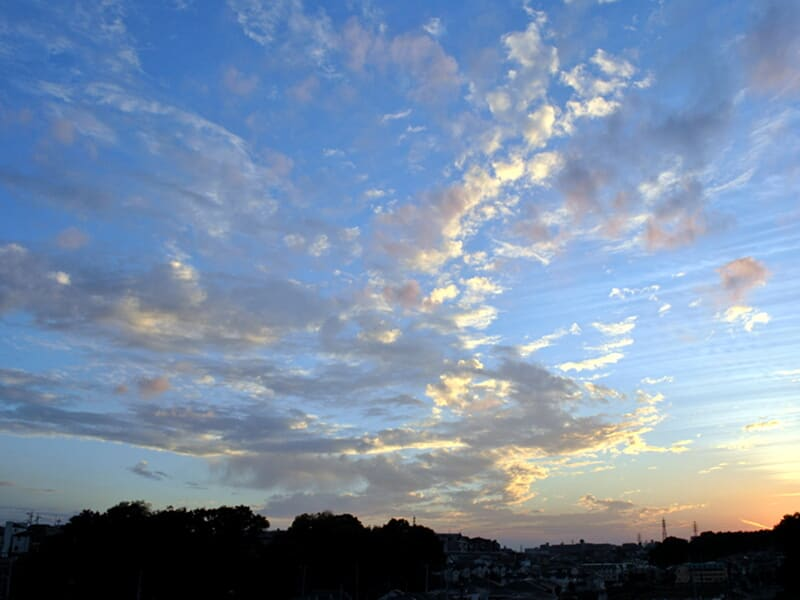 11月01日 夕陽