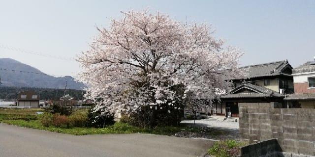 北海道 札幌 空手 大阪入り