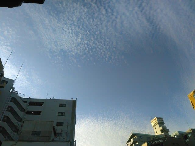 雲 海老蔵 地震