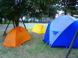 城南島 キャンプ場 テント ツエルト