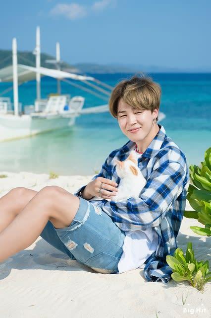 BTS スターキャストに載ったサマパケに関する記事(2017.8.28