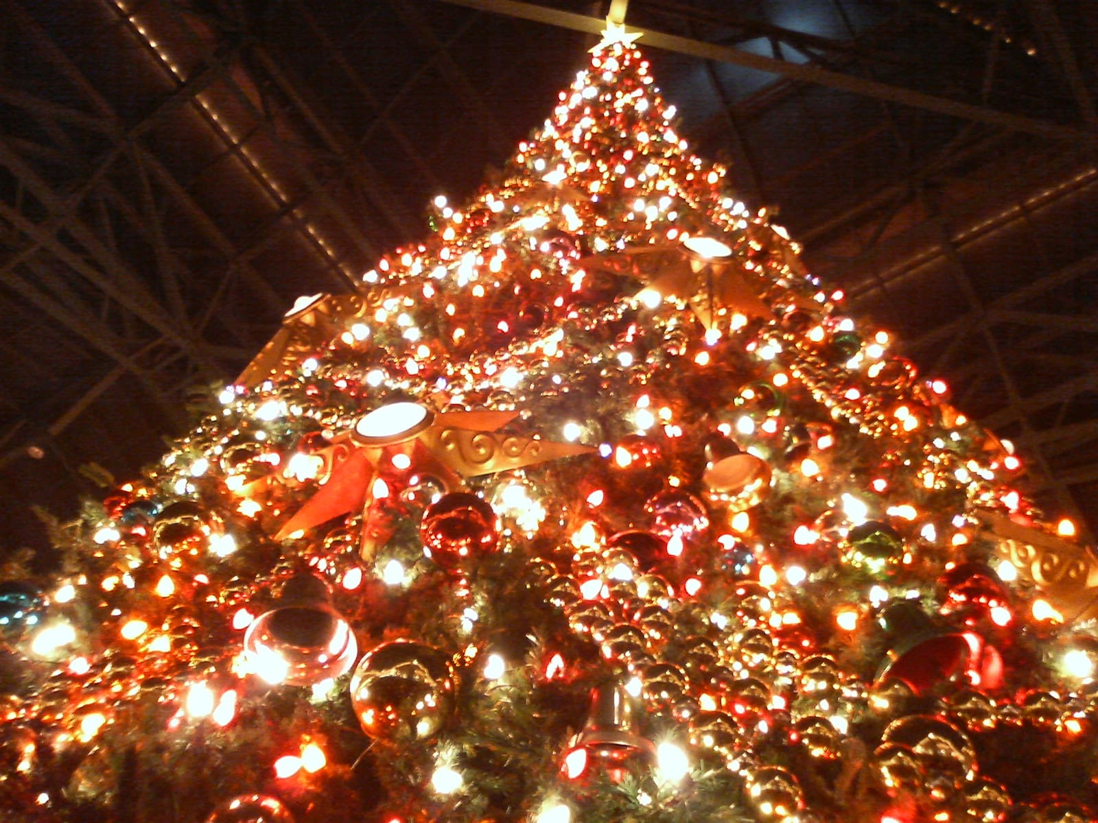 東京ディズニーランド2005クリスマス - 美味○○~grape basin~