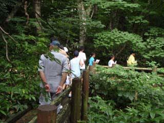 下山木道観察会。キャンプをされる方以外でもご自由にご散策下さい。