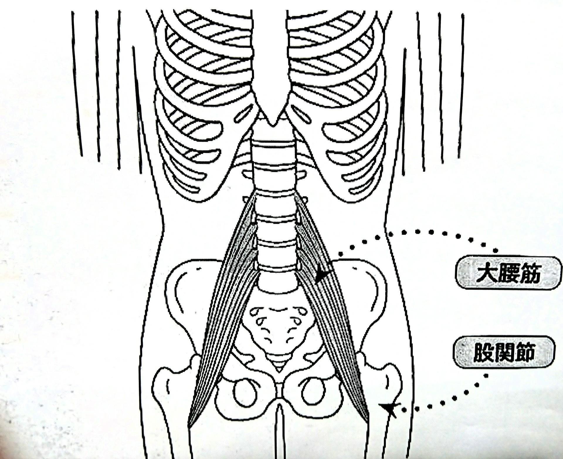 と 肋骨 痛い 押す