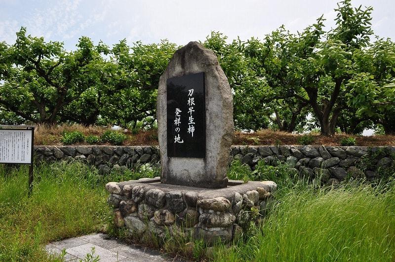 刀根早生柿発祥の地碑