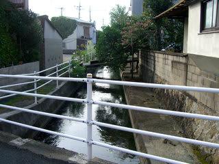 鴨原橋から下井手川下流を望む
