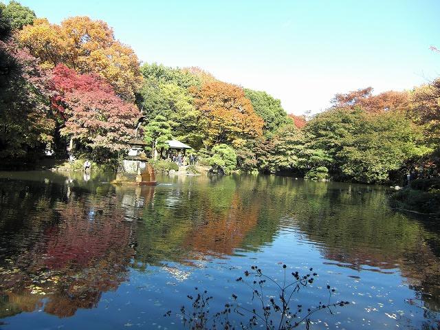 小春日和で水鏡に映った紅葉