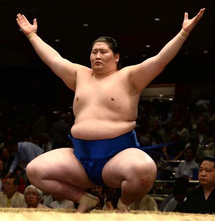 「大相撲逸ノ城無料写真」の画像検索結果