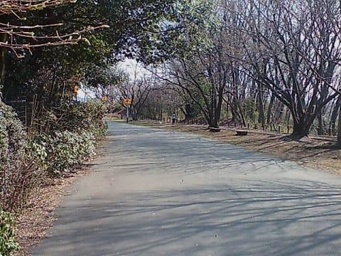 戦車道路 サイクリング