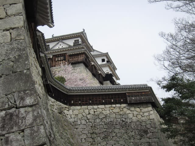 Matsuyamajou2