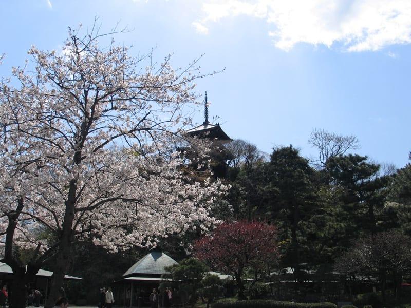 Sanjyuunotou_1562