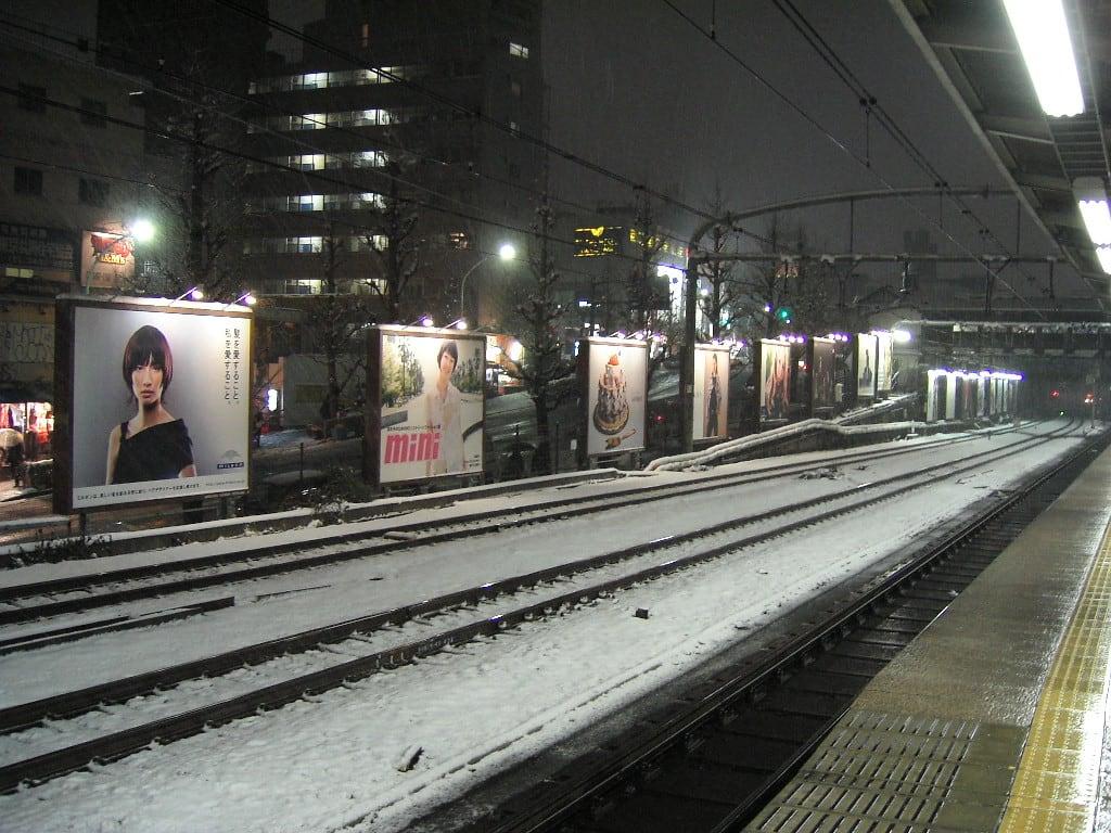 雪で覆っても、雪(そそ)げぬ咎がある