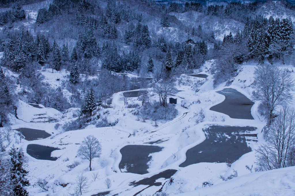 蒲生棚田 冬の写真