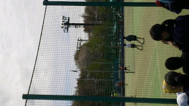 テニス観戦