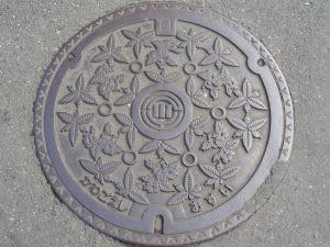 Kawagoesi2