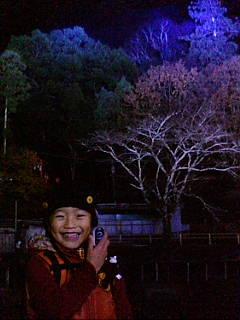 嵐山花灯路に来ています