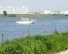 この川岸にバーベーキューの設備が整っています