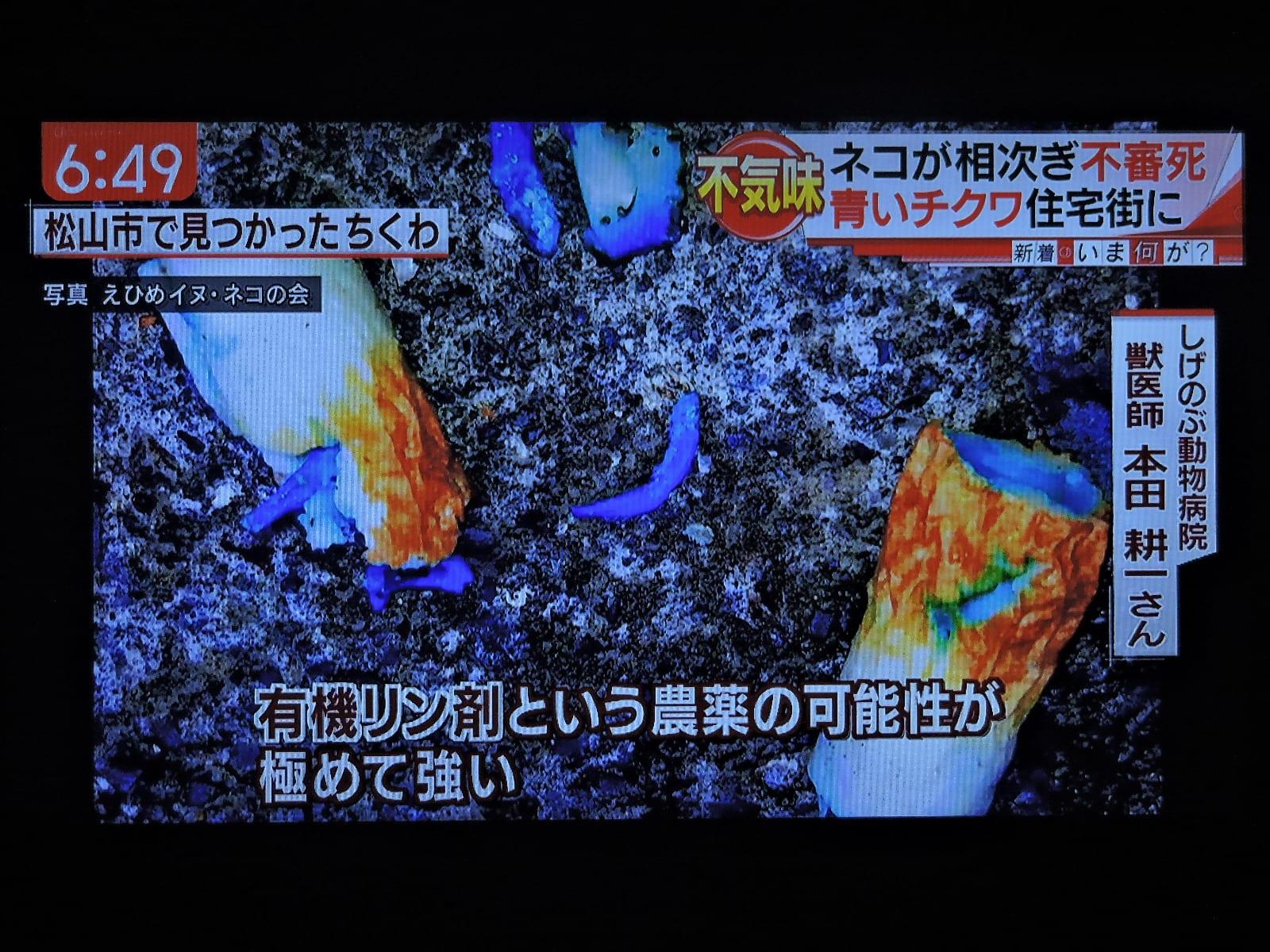 4/5 青い毒は有機リン剤かもしれない - ab Cuore