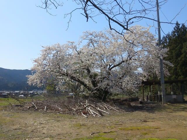 普段は訪れる人も居ないのか三根山藩陣屋跡の公園 - 手さぐりブログ ...