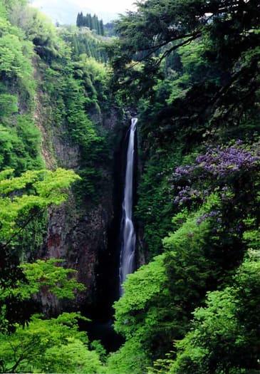 「大分県・九重震動の滝」
