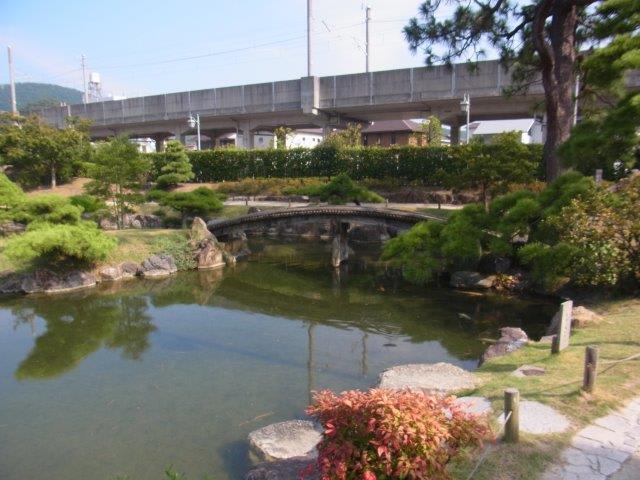 香風園にて鯉を眺めた - 撮りさ...