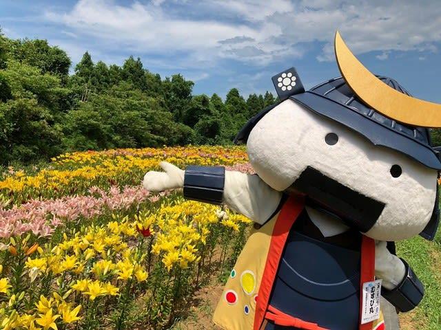 仙台宮城観光キャンペーン推進協議会スタッフブログ