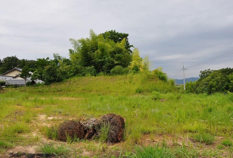 池部三ツ池遺跡