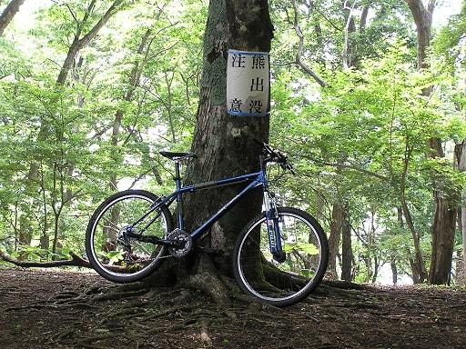 山岳サイクリング