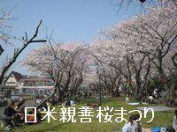 横須賀のイベント「日米親善桜まつり」