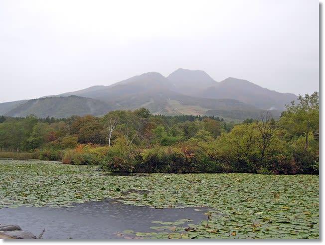 雨降るいもり池と妙高山