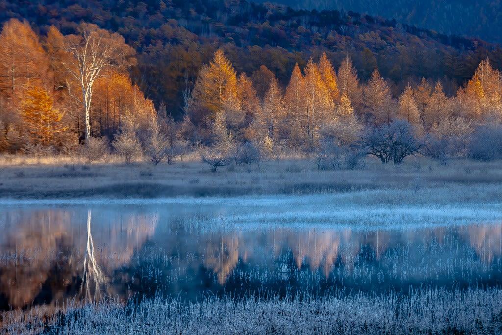 小田代ヶ原の紅葉の写真
