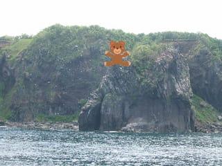 知床岬にヒグマが遠くに・・