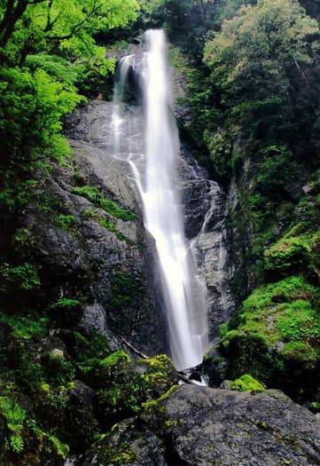 「熊本県八代の滝」