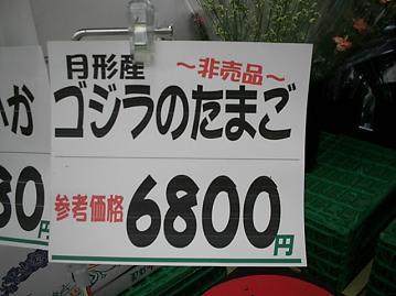 Photo_433