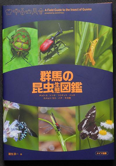 おすすめ 昆虫 図鑑 おすすめ「図鑑セット」人気ランキングと選び方