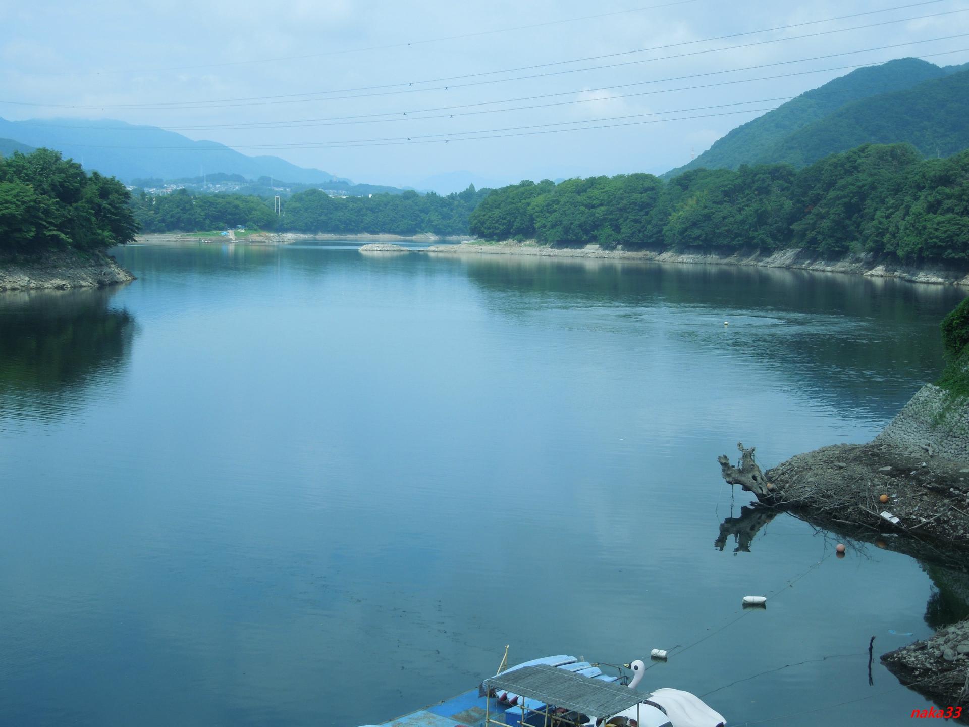 城山 ダム 貯水 率
