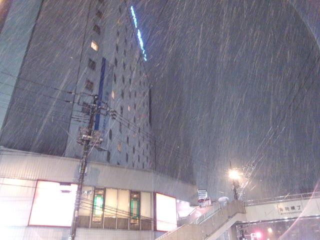 とうとう雪が降ってきました。