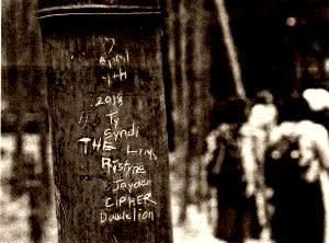 竹に彫られた落書き