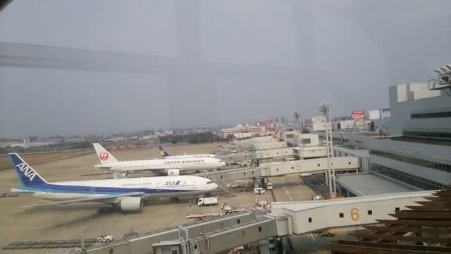 福岡 空港 タピオカ