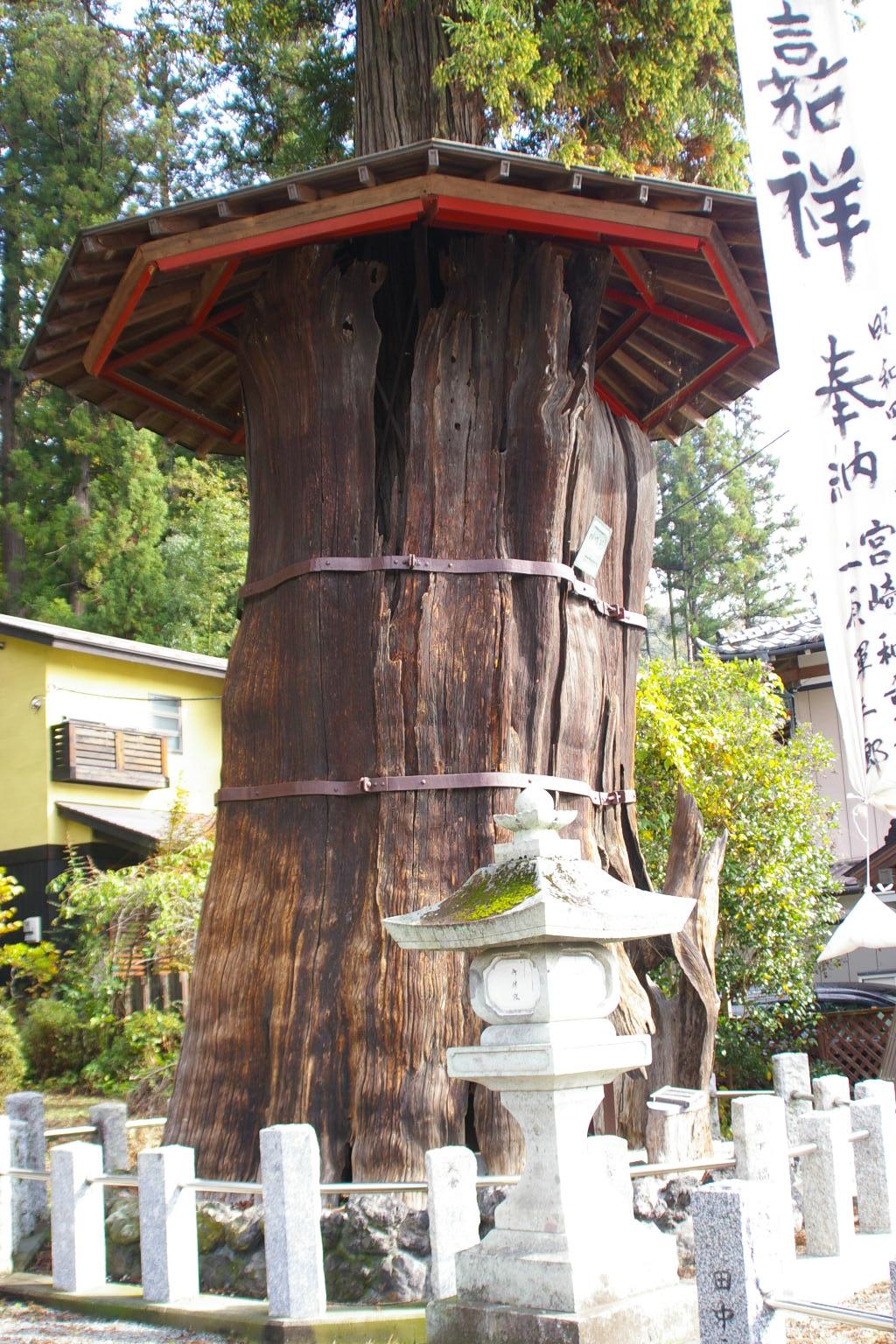 群馬県東吾妻町、鳥頭神社の神代...