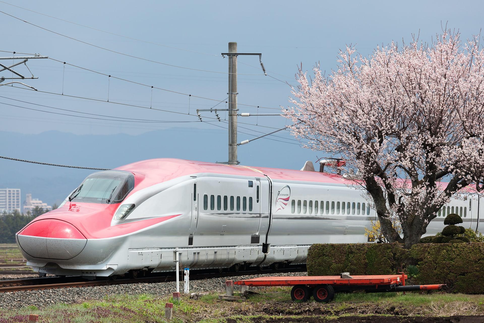 盛岡の桜と新幹線 - 一瞬に永遠が刻まれて