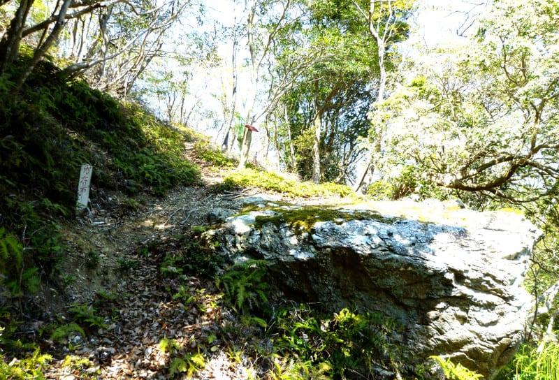 鸚鵡石に声をかける腰掛岩
