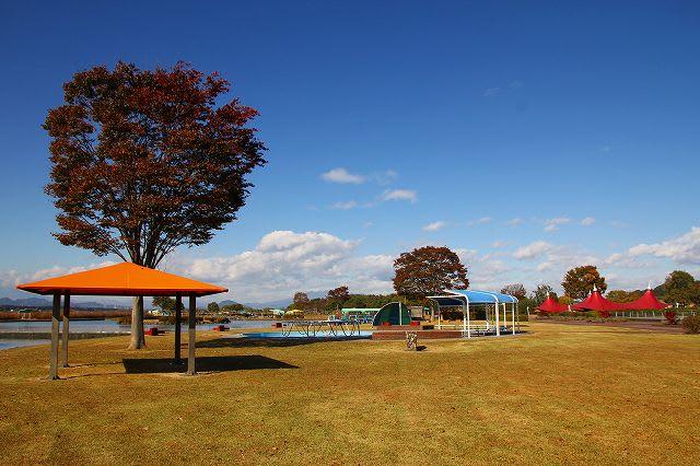 「高根沢町」のブログ記事一覧-栃木の木々