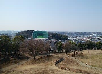 kawawafuji2