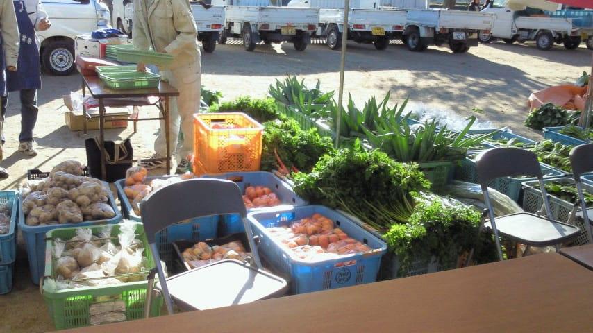 地元箕面で穫れた野菜