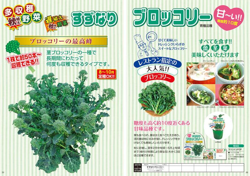13f_27suzunari_broccoli1