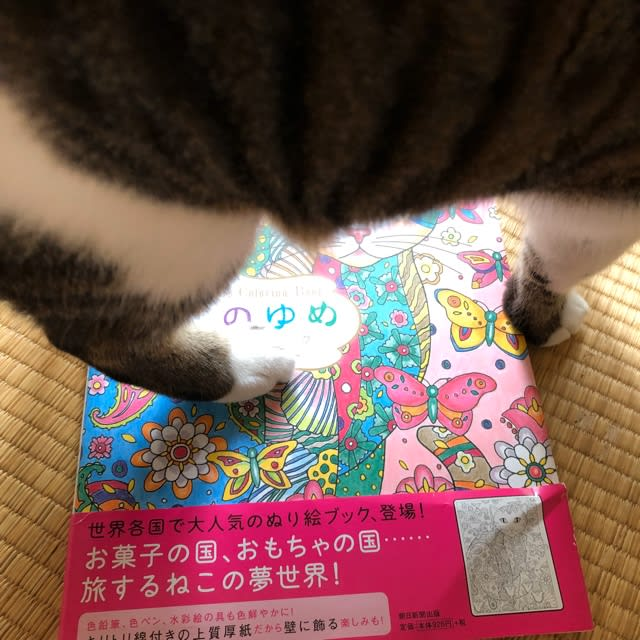 https://blogimg.goo.ne.jp/user_image/68/ef/d10eb37d823ec9a640c9adfeb53a848d.jpg