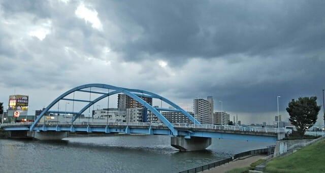 尾竹橋 - 自然と農業の物語 タンポポの独り言